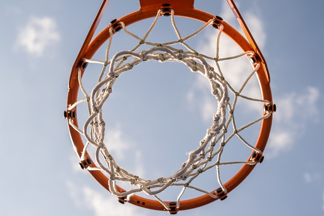 Basketbol Filesi