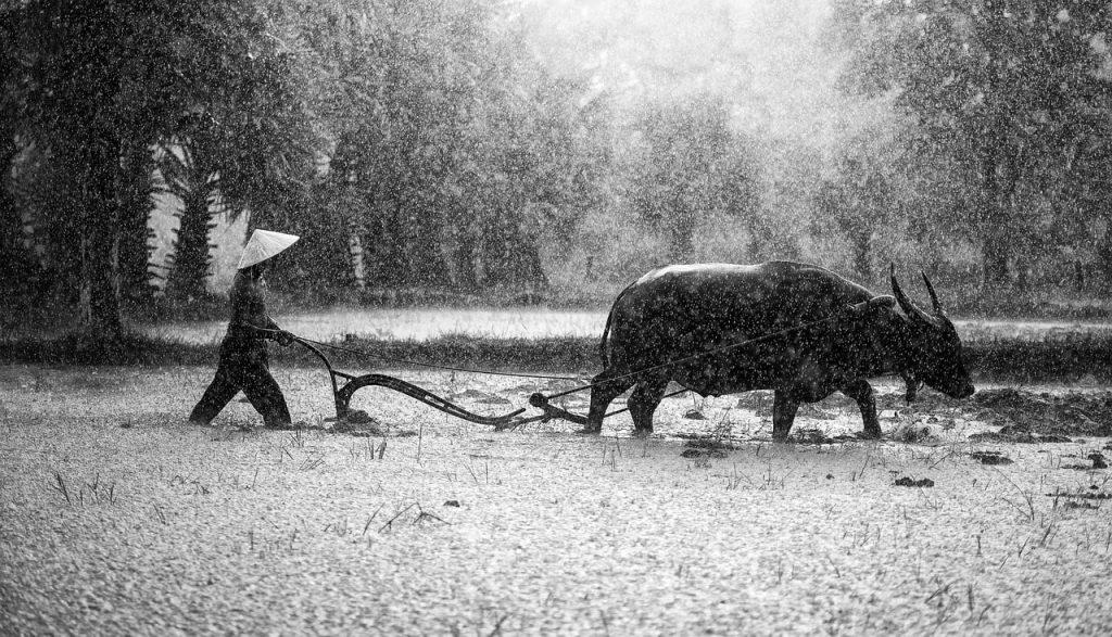 Kamboçya Muson Yağmurları