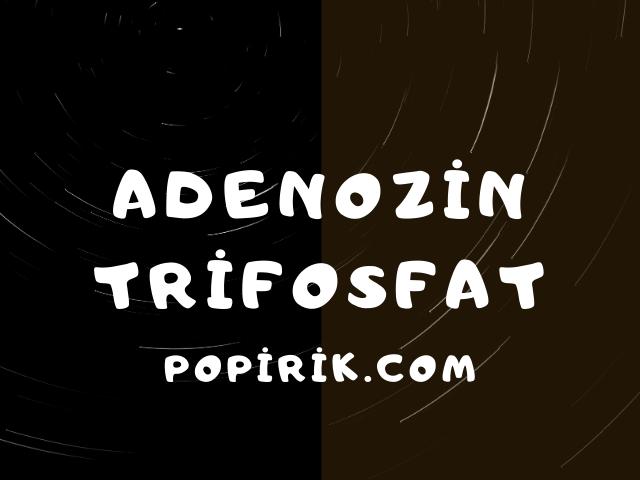 Adenozin Trifosfat Hakkında Bilgiler
