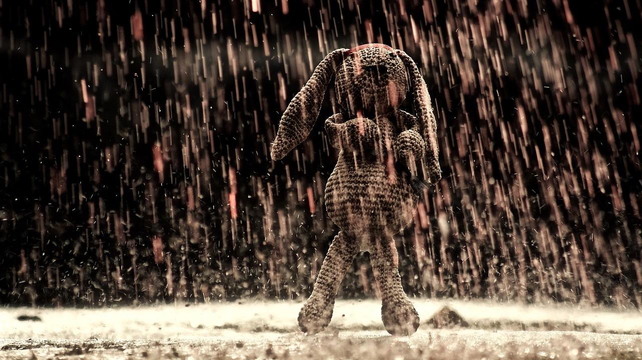 Yağmurlu bir günde yürüyüş yapar mısın ?